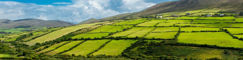 grass fields on mountain terrain