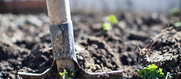 Shovel for gardening